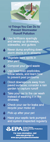10 things you can do to prevent stormwater runoff pollution (JPG)